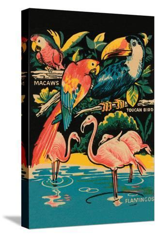 Tropical Hobbyland - Birds--Stretched Canvas Print