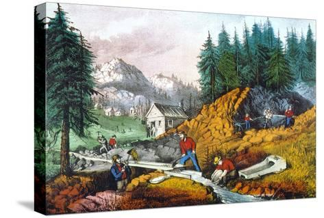 California: Gold Mining-Currier & Ives-Stretched Canvas Print