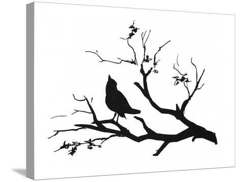 Silhouette: Bird on Branch--Stretched Canvas Print