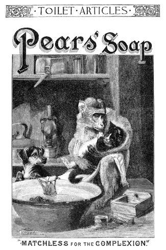 Pears' Soap Ad, 1888--Stretched Canvas Print