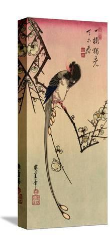 Magpie, 19th Century-Ando Hiroshige-Stretched Canvas Print