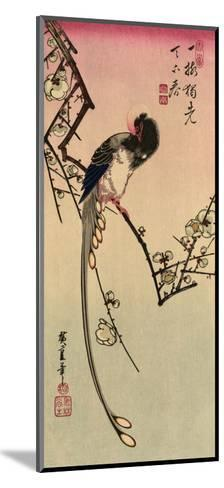 Magpie, 19th Century-Ando Hiroshige-Mounted Giclee Print