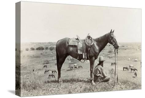 Texas: Cowboy, c1910-Erwin Evans Smith-Stretched Canvas Print