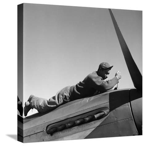 Tuskegee Airman, 1945-Toni Frissell-Stretched Canvas Print