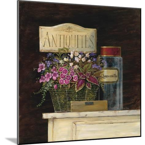 Jarden de Antiquites-Angela Staehling-Mounted Art Print