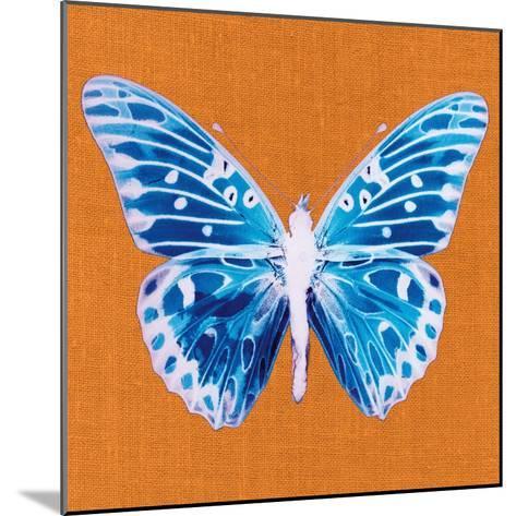 Orange Pop Butterfly-Christine Caldwell-Mounted Art Print