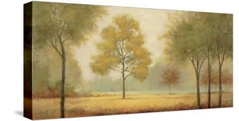 Tranquil Panorama-Jill Schultz McGannon-Stretched Canvas Print