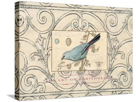 Songbird Etching 2-Chad Barrett-Stretched Canvas Print