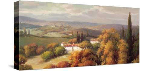 Tuscan Panorama-Vail Oxley-Stretched Canvas Print