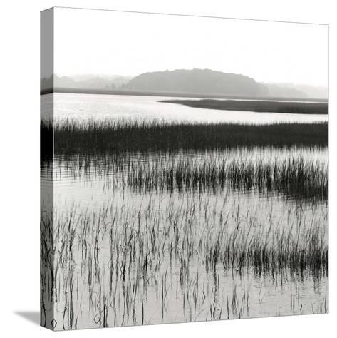 Nut Island, Salt Marsh-Dorothy Kerper Monnelly-Stretched Canvas Print