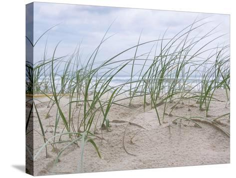 Seaside-Mark Goodall-Stretched Canvas Print