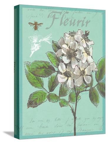 Fleurir Nouveau-Devon Ross-Stretched Canvas Print