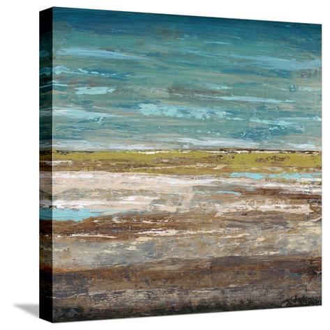 Abstract Sea 2-Dennis Dascher-Stretched Canvas Print