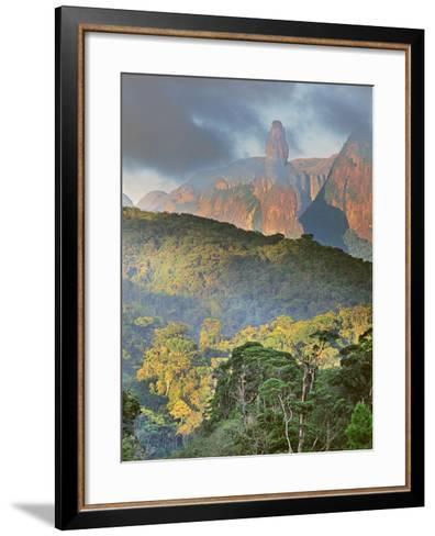 Rainforest and Granite Mountains, Serra Dos Orgaos National Park, Brazil-Frans Lanting-Framed Art Print