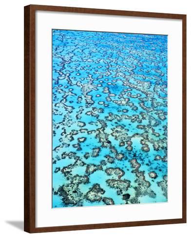 Coral Reefs (Aerial), Great Barrier Reef, Australia-Frans Lanting-Framed Art Print