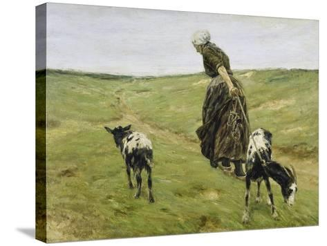 Woman with Goats on the Dunes, 1890-Max Liebermann-Stretched Canvas Print