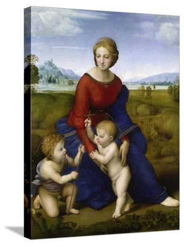 Madonna in the Meadow-Raphael-Stretched Canvas Print