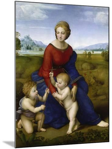 Madonna in the Meadow-Raphael-Mounted Giclee Print