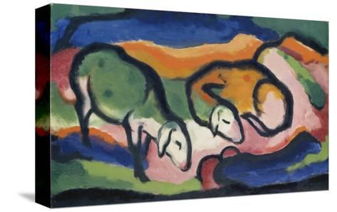 Sheep, 1912-Franz Marc-Stretched Canvas Print