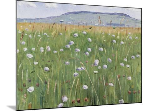 Meadow of Flowers, about 1901-Ferdinand Hodler-Mounted Giclee Print