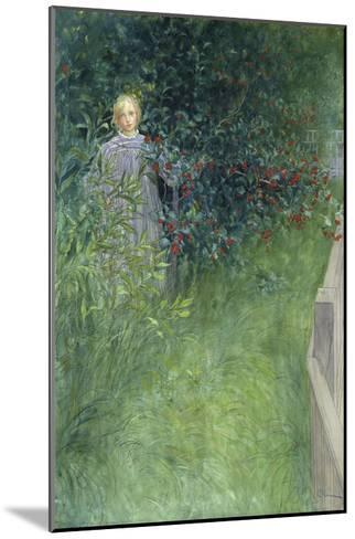In the Rose Hip Hedge-Carl Larsson-Mounted Giclee Print
