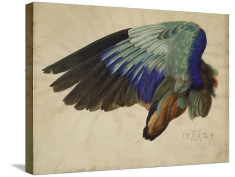 The Right Wing of a Blue Roller, 1524-Albrecht D?rer-Stretched Canvas Print