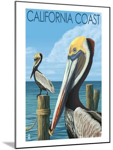 California Coast - Pelicans-Lantern Press-Mounted Art Print