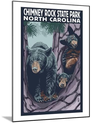 Chimney Rock State Park, NC - Bear and Cubs-Lantern Press-Mounted Art Print