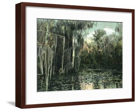 Florida - View of Pond Lilies and Hanging Moss-Lantern Press-Framed Art Print