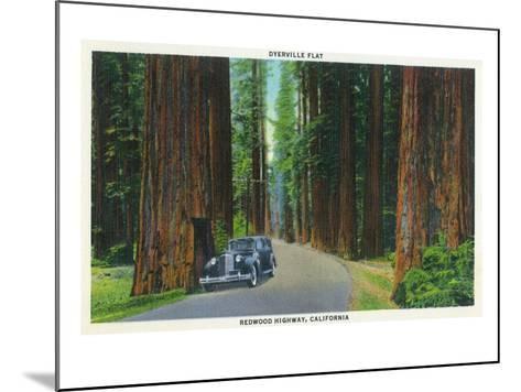 California - Dyerville Flat Scene on the Redwood Highway-Lantern Press-Mounted Art Print
