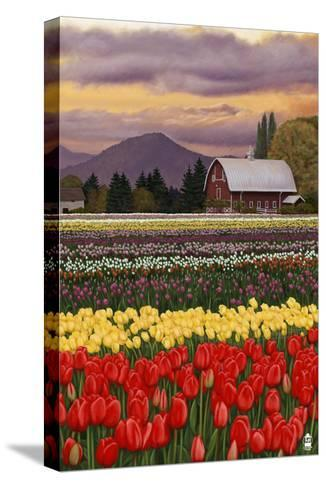 Tulip Farm-Lantern Press-Stretched Canvas Print