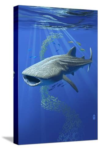 Whale Shark-Lantern Press-Stretched Canvas Print