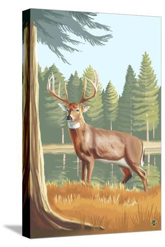 White Tailed Deer-Lantern Press-Stretched Canvas Print