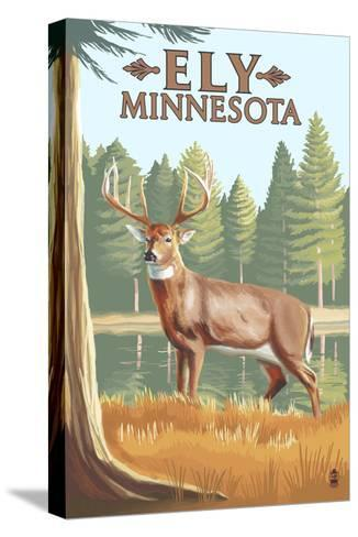 Ely, Minnesota - White Tailed Deer-Lantern Press-Stretched Canvas Print