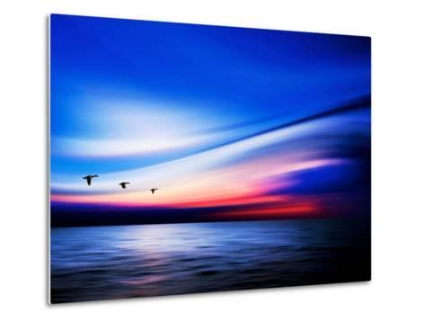 Blue Geese-Josh Adamski-Metal Print