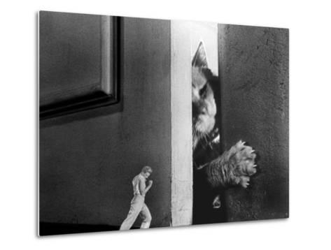 The Incredible Shrinking Man, Grant Williams, 1957--Metal Print