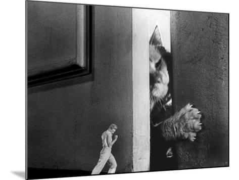 The Incredible Shrinking Man, Grant Williams, 1957--Mounted Photo