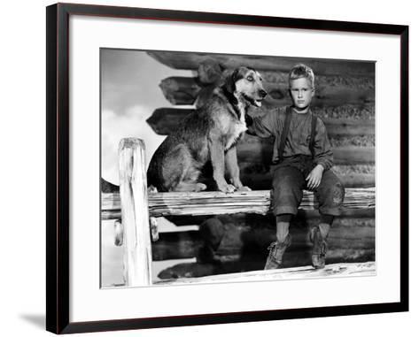 Shane, Brandon De Wilde, 1953--Framed Art Print