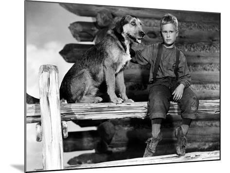 Shane, Brandon De Wilde, 1953--Mounted Photo