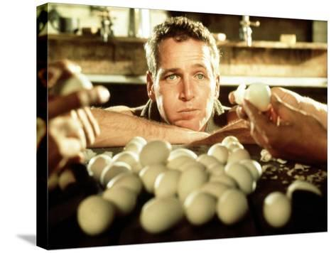 Cool Hand Luke, Paul Newman, 1967--Stretched Canvas Print