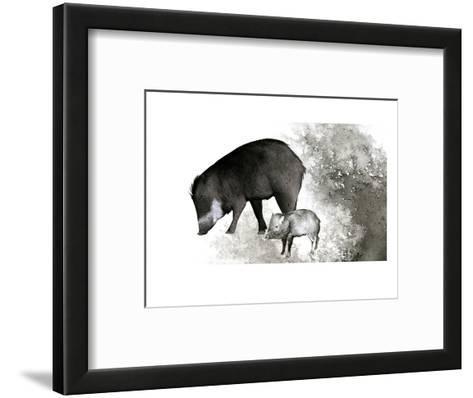 White-Lipped Peccary-Jane Kim-Framed Art Print