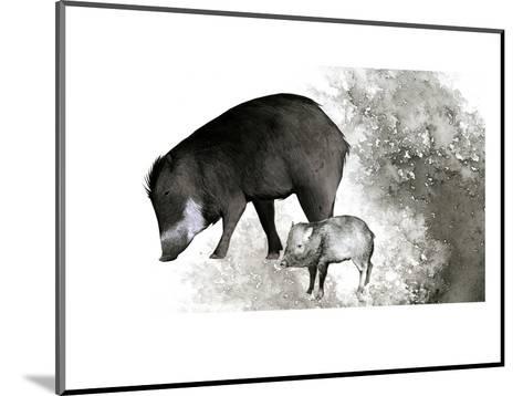White-Lipped Peccary-Jane Kim-Mounted Premium Giclee Print