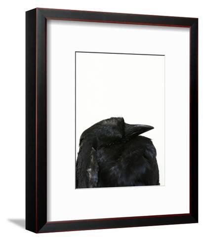 Crow Head-Judy Tuwaletstiwa-Framed Art Print