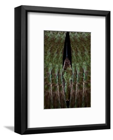 Hummingbird-Judy Tuwaletstiwa-Framed Art Print