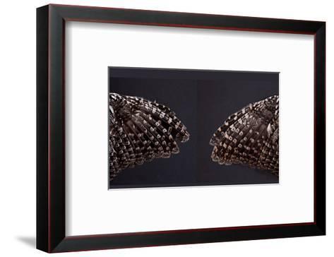 Owl Wings-Judy Tuwaletstiwa-Framed Art Print