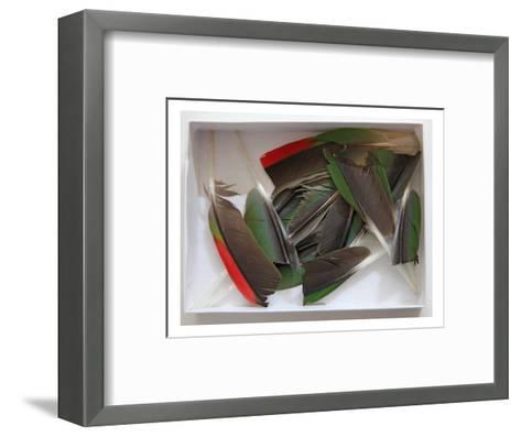 Parrot Feathers, no. 1-Judy Tuwaletstiwa-Framed Art Print