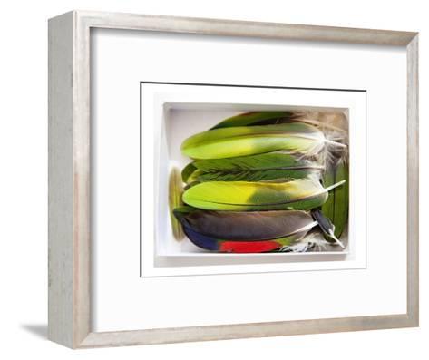 Parrot Feathers, no. 2-Judy Tuwaletstiwa-Framed Art Print