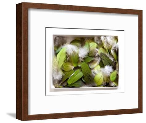 Parrot Feathers, no. 3-Judy Tuwaletstiwa-Framed Art Print