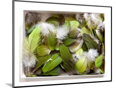 Parrot Feathers, no. 3-Judy Tuwaletstiwa-Mounted Premium Giclee Print