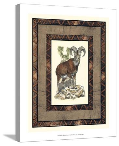 Rustic Big Horn-Vision Studio-Stretched Canvas Print